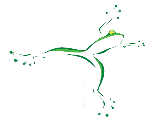 Audiofrog